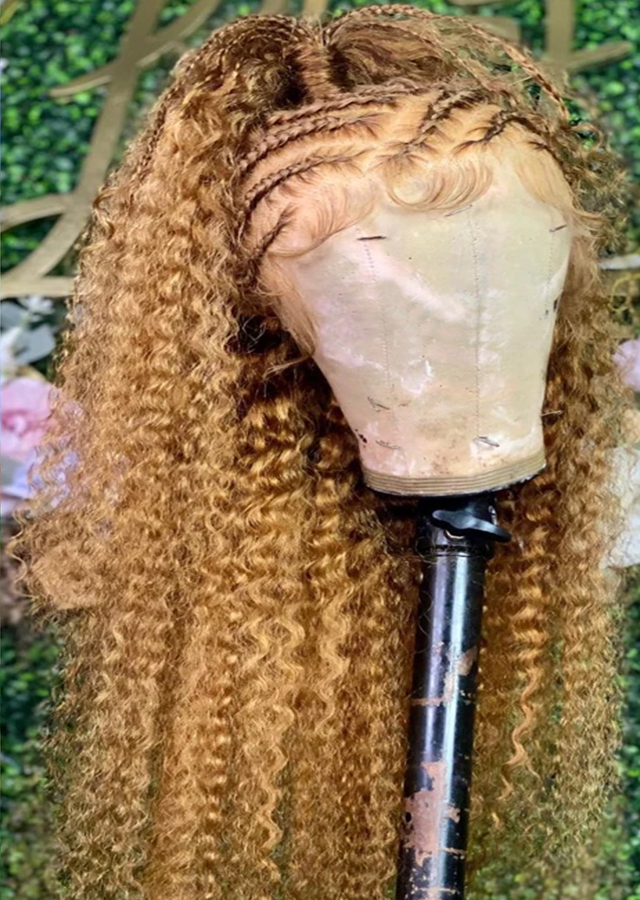 27 Colored Curly Full Lace Human Hair Wig 20inch Preplucked For Black Women